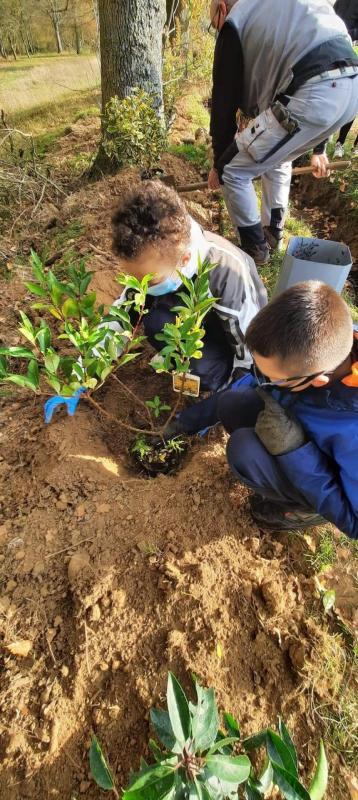 25/11/2020: plantations avec les éco-délégués